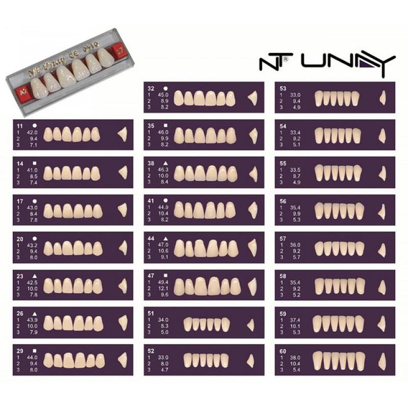 D3-14 - Зъбни гарнитури NT Unay