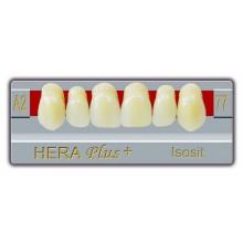 A1-G1 Зъбни гарнитури Hera plus Isosite