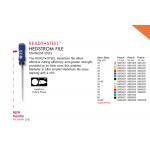 H-files 25 mm 45/80 - Denstply